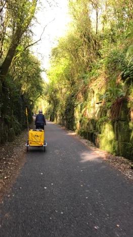 greenwaytunnel1